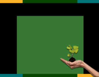 Solutions et tendances environnementales