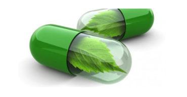 Nouveau formulaire de demande de licence de mise en marché de produits de santé naturels