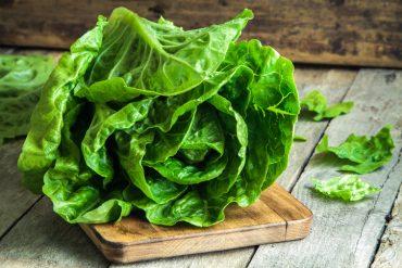 L'Agence canadienne d'inspection des aliments (ACIA) prévoit appliquer certaines mesures à l'égard de la laitue romaine importée de la vallée de Salinas