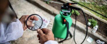 Montréal restreint davantage l'utilisation de certains pesticides