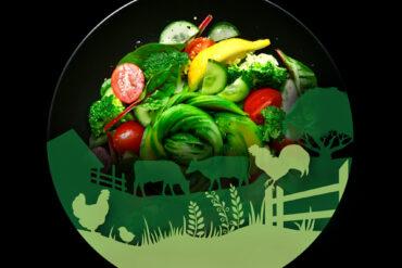 La conviction de durabilité. L'avenir de l'alimentation : une perspective canadienne